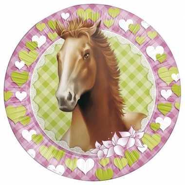 16x paarden themafeest wegwerpbordjes 23 cm- feestje!