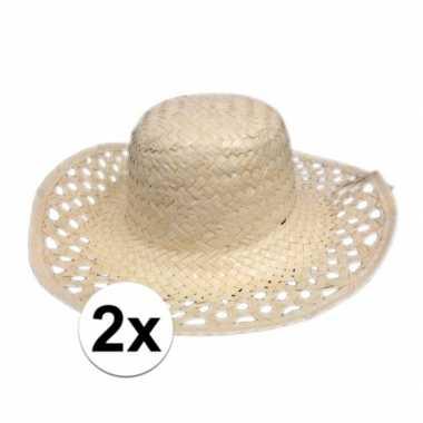 2x hawaii feest hoedje van stro- feestje!