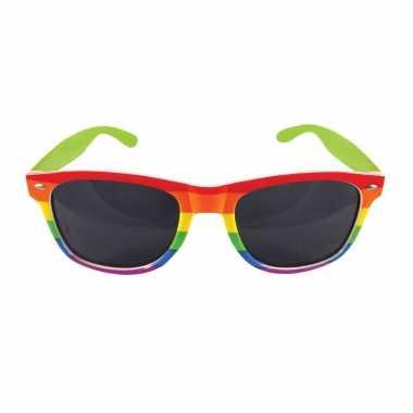 2x regenboog feest brillen voor volwassenen feestje