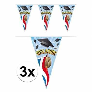 3x vlaggenlijnen geslaagd thema feestartikelen 10 meter- feestje!