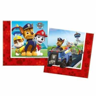 40x paw patrol themafeest servetten 33 x 33 cm papier- feestje!