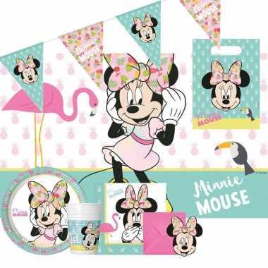 Disney minnie mouse thema kinderfeestje feestpakket 2-6 personenfeest