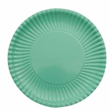 Feestartikelen borden mint groen 10 stuks- feestje!