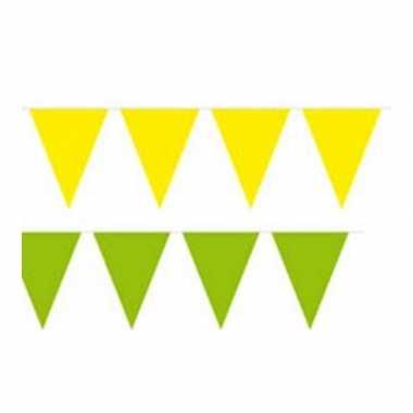Gele en groene feest vlaggenlijnen feestje