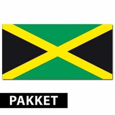 Jamaicaanse feestartikelen pakket- feestje!