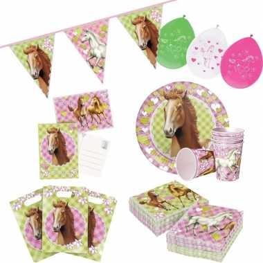 Paarden thema kinderfeestje versiering pakket 2-6 personenfeestje!