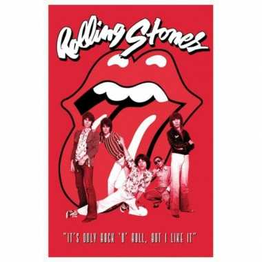 Themafeest poster rolling stones feestje 10070926