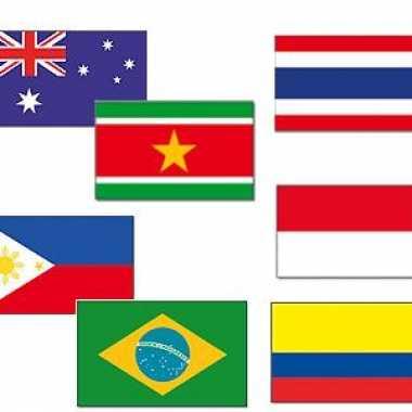 Tropisch feest dekoratie vlaggen- feestje!
