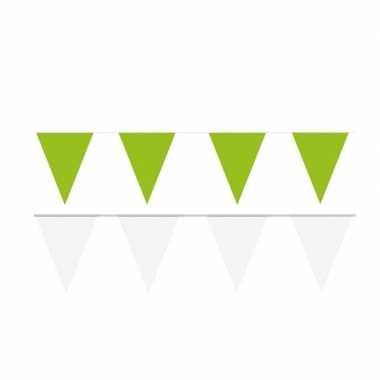 Witte/groene feest punt vlaggetjes pakket 120 meter- feestje!