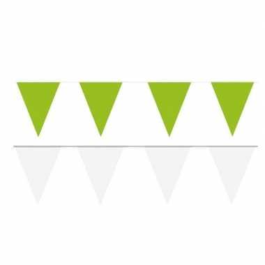 Witte/groene feest punt vlaggetjes pakket 60 meter- feestje!