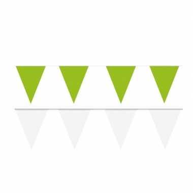 Witte/groene feest punt vlaggetjes pakket 80 meter- feestje!