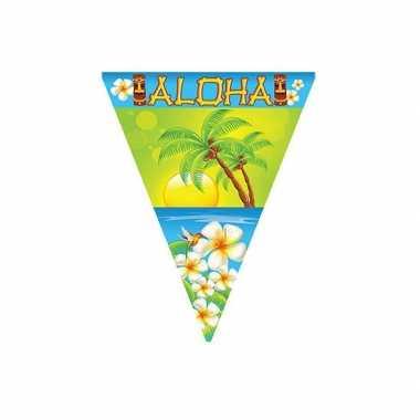 Zomerfeest aloha slinger 5 meter- feestje!