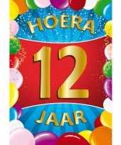 12 jaar mega deurposter 59 x 84 cm leeftijd verjaardag feestartikelen feestje