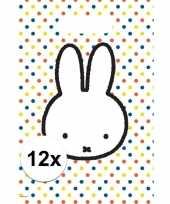 12x nijntje themafeest uitdeelzakjes snoepzakjes 30 x 21 cm feestje