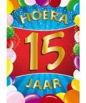15 jaar mega deurposter 59 x 84 cm leeftijd verjaardag feestartikelen feestje