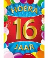 16 jaar mega deurposter 59 x 84 cm leeftijd verjaardag feestartikelen feestje