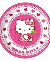 16x hello kitty themafeest bordjes 23 cm feestje