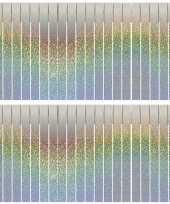 2x franjeslingers holografische feest slingers 6 meter feestje