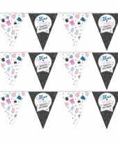 3x vlaggenlijnen gender reveal party feest slingers 10 meter feestje