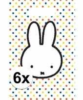 6x nijntje themafeest uitdeelzakjes snoepzakjes 30 x 21 cm feestje