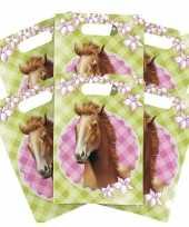 6x paarden themafeest feestzakjes uitdeelzakjes feestje