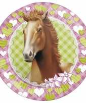 8x paarden themafeest wegwerpbordjes 23 cm feestje
