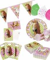Paarden thema kinderfeestje versiering pakket 7 12 personen feestje