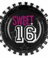 Papieren sweet 16 feestborden feestje
