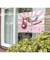Raamvlag geboorte meisje feestartikelen 60 x 90 cm feestje