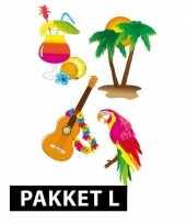 Samengesteld pakket hawaii feest groot feestje