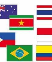 Tropisch feest dekoratie vlaggen feestje